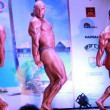Adel Cup do 90 kg